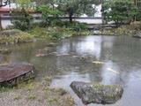 養浩館庭園(その2)。