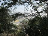 鳴門中央公園(その3)。