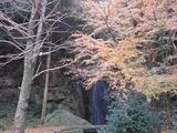 鳴滝と紅葉(その1)。