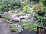 童学寺、庭園(その1)。