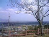 上桜城址、春。。