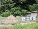 三村用水(その1)。