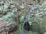 喜来の滝(その1)。