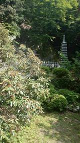 徳円寺(その3)。