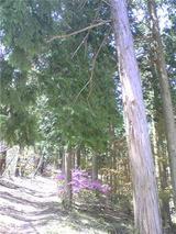 鷹山公園。