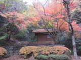 2012、七釜の紅葉(その3)。