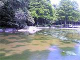 徳島中央公園。