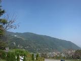 丸山公園(その3)。