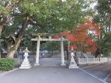 大麻比古神社の紅葉(その1)。