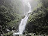 雨乞いの滝(その5)。