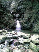 八多五滝の某滝。