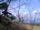 上桜城址、春。