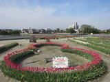 北島中央公園(その1)。