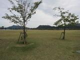 鳴門ウチノ海総合公園(その2)。