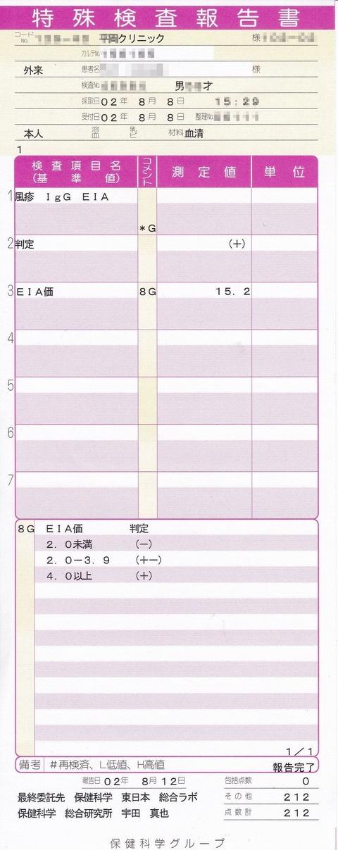 風疹抗体検査200808m_R