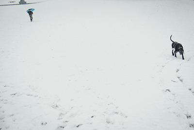 snow12 blog