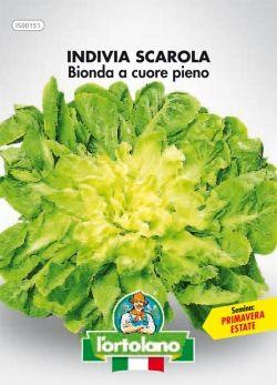 -bionda-cp