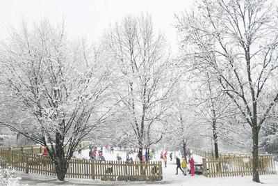 snow blog07