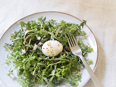 bird nest salad blog