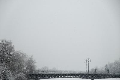 snow blog08