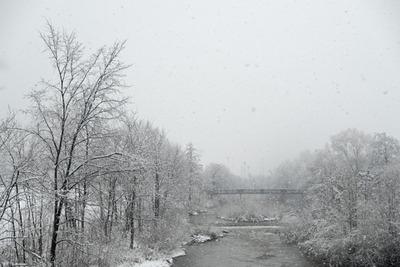 snow blog11