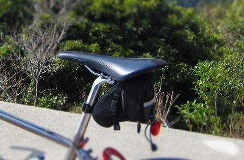 自転車の marin 自転車 評価 : Fizi:k Arione Versus kium : 六甲魂 ...