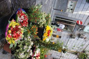 キアイアの花屋.jpg