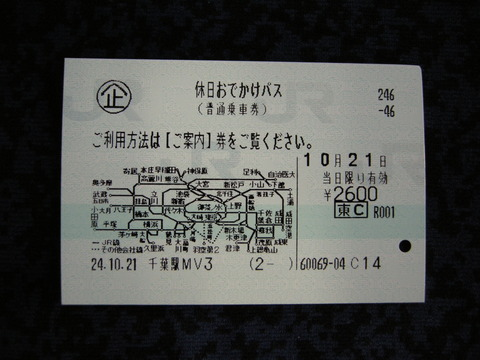 DSCN6773