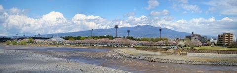 20130407tonegawa01 (1)