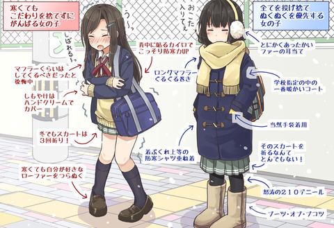 【画像】女の子・・・特に女子高生って服装へのこだわり凄いよな