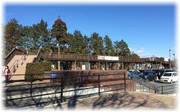 駐車場間をつないでいる木橋