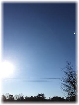 今朝の青過ぎる寒空