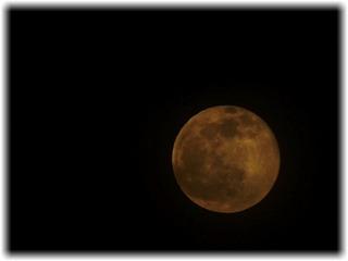 雲の合間から覗く満月を愉しむ
