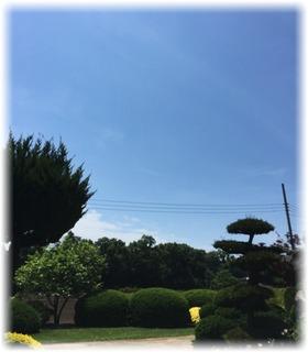昨日と比べて・・何て良い天気☀