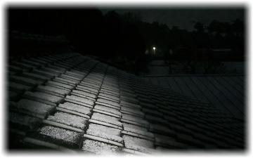 予報は的中して雪景色の朝