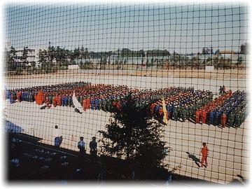 体育祭で全体が写っている写真