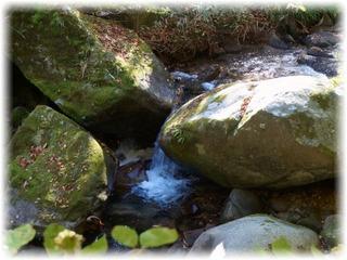 川中の大小の岩とか・・