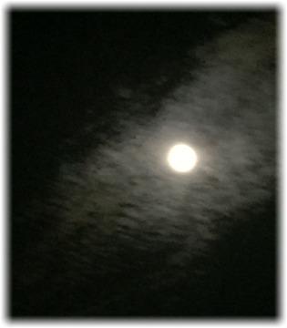 良い感じに雲が被った月♪