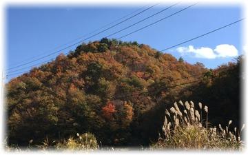 対面の山の紅葉はまだ始まったばかり