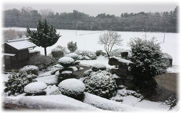 今朝の外周りはスッカリ雪景色の中❄️