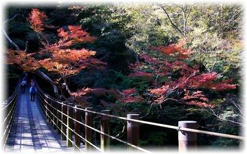 お目当ての「汐見滝吊り橋」です