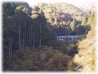 赤い橋の上から上流側に橋が見える