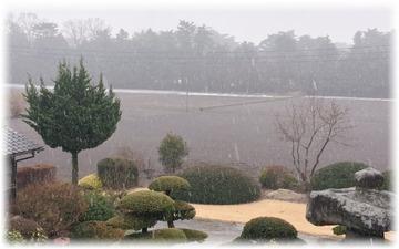 午後は雨って予報だったのになァ
