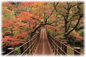 汐見滝吊り橋は華やかな紅葉のトンネル