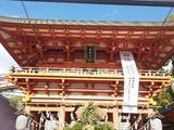 恒例の初詣、生田神社。
