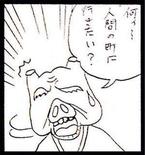 6b537c29.jpg