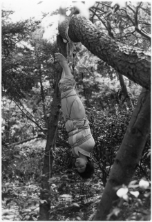 E72梨花野外の逆さ吊り責