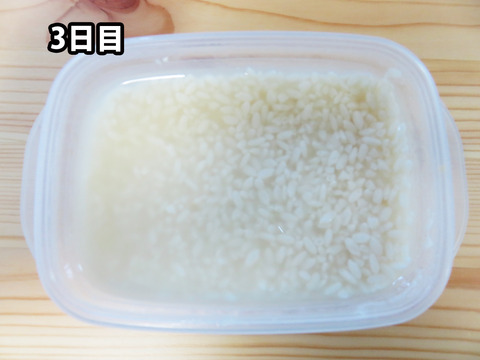 20151014塩麹03