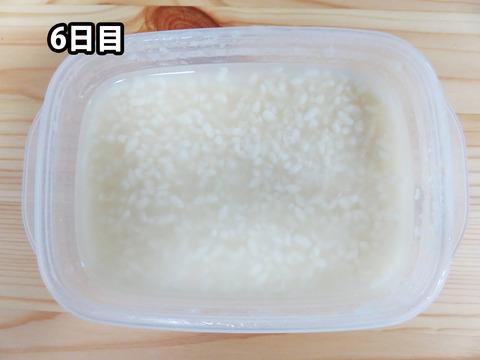 20151014塩麹06
