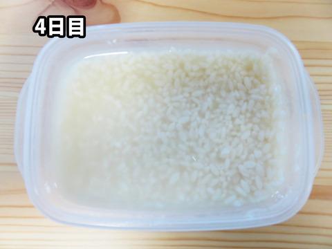 20151014塩麹04